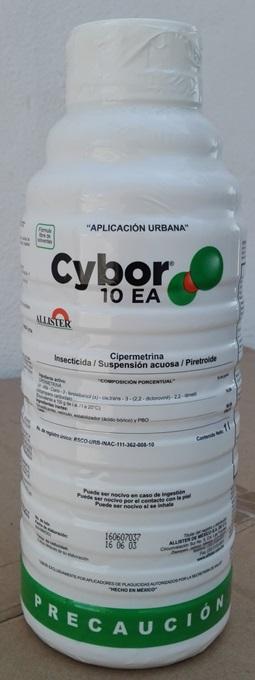 Cybor 10 EA-Bote